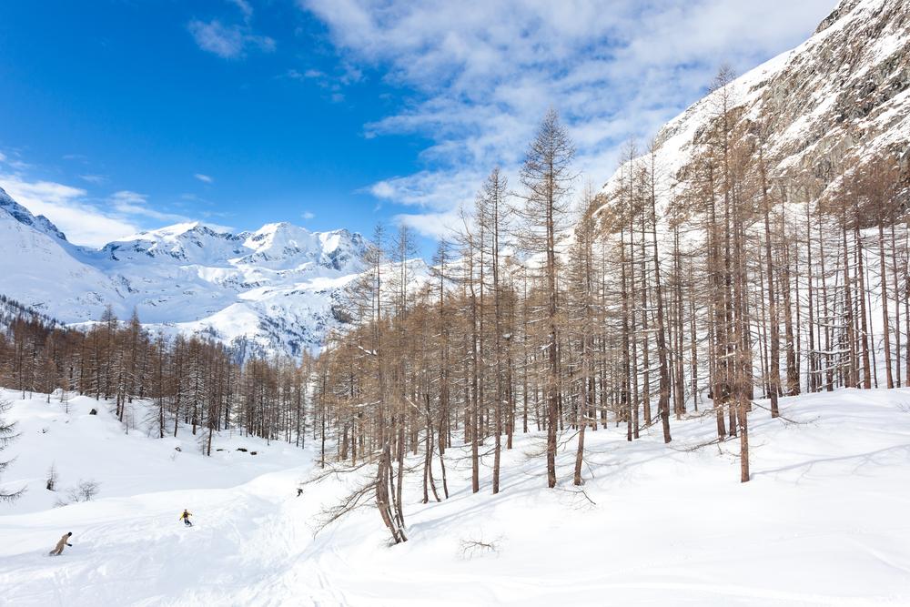 Valle di Gressoney (Hotel Monboso, Valle d'Aosta)